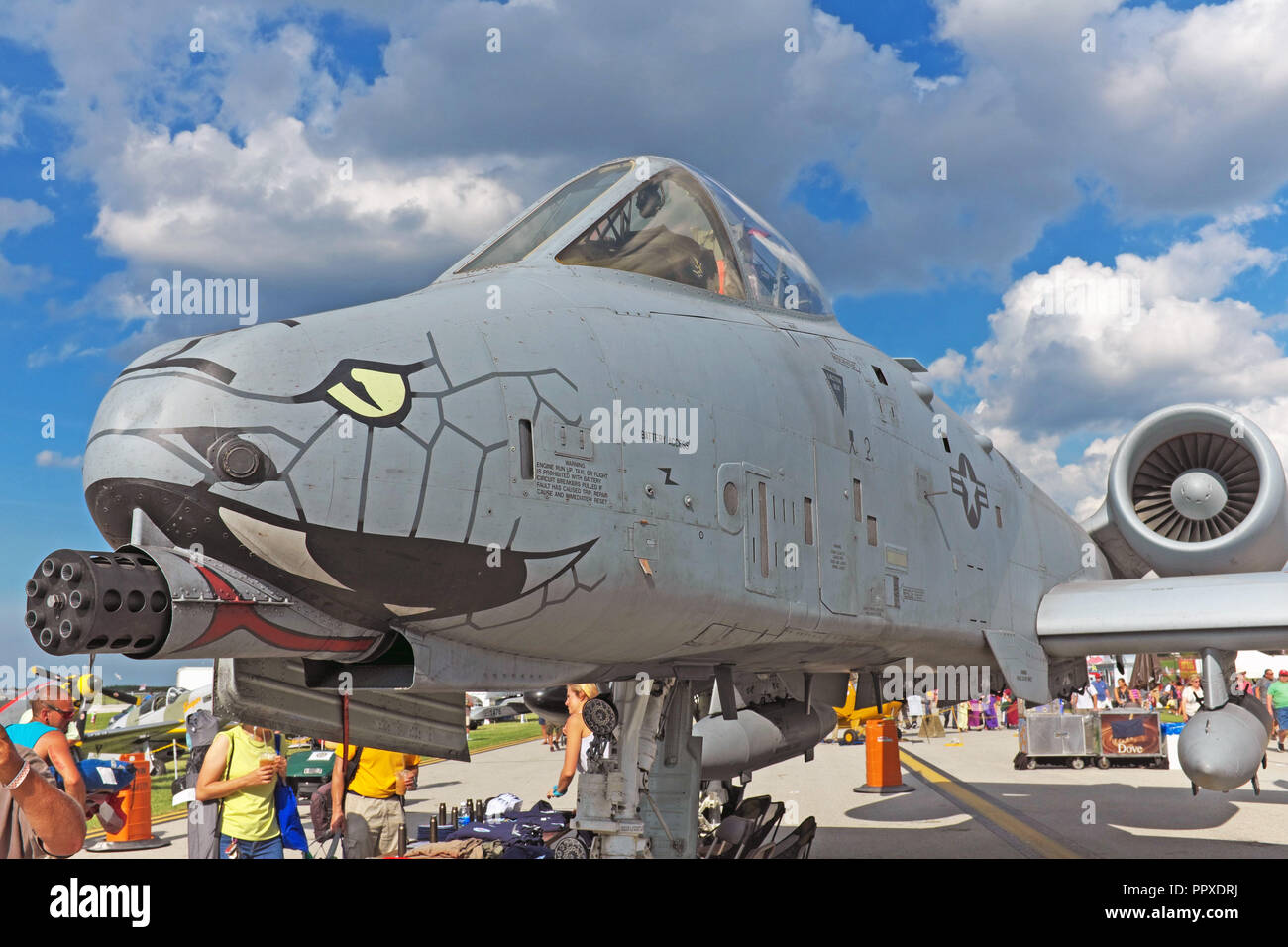 US Airforce A-10 warthog warplane with serpentine nose art on display at the 2018 Cleveland National Air Show in Cleveland, Ohio, USA. - Stock Image