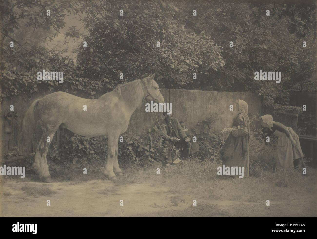 Old Dapple; Henry Peach Robinson, British, 1830 - 1901, 1899; Platinum print; 43.8 x 65.7 cm, 17 1,4 x 25 7,8 in - Stock Image