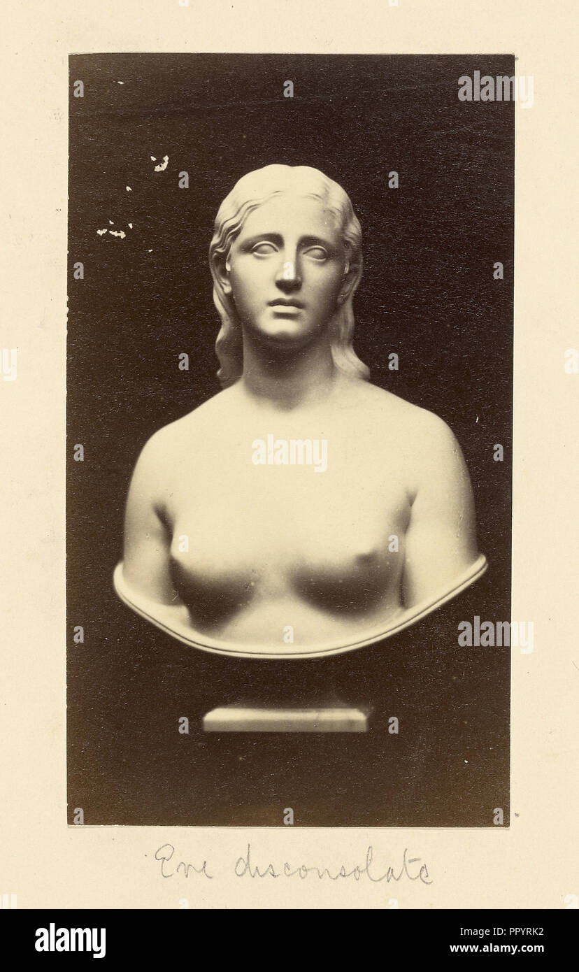 Sculptural Female Bust; British; 1870s - 1880s; Print - Stock Image