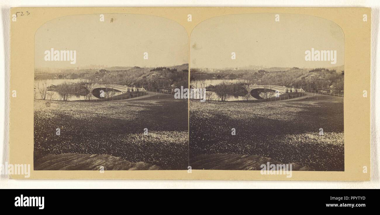 Panorama of The Ramble, Central Park, Snow not yet melted off; Tannin, ?, or Frederick F. Thompson, American, 1836 - 1899, May - Stock Image