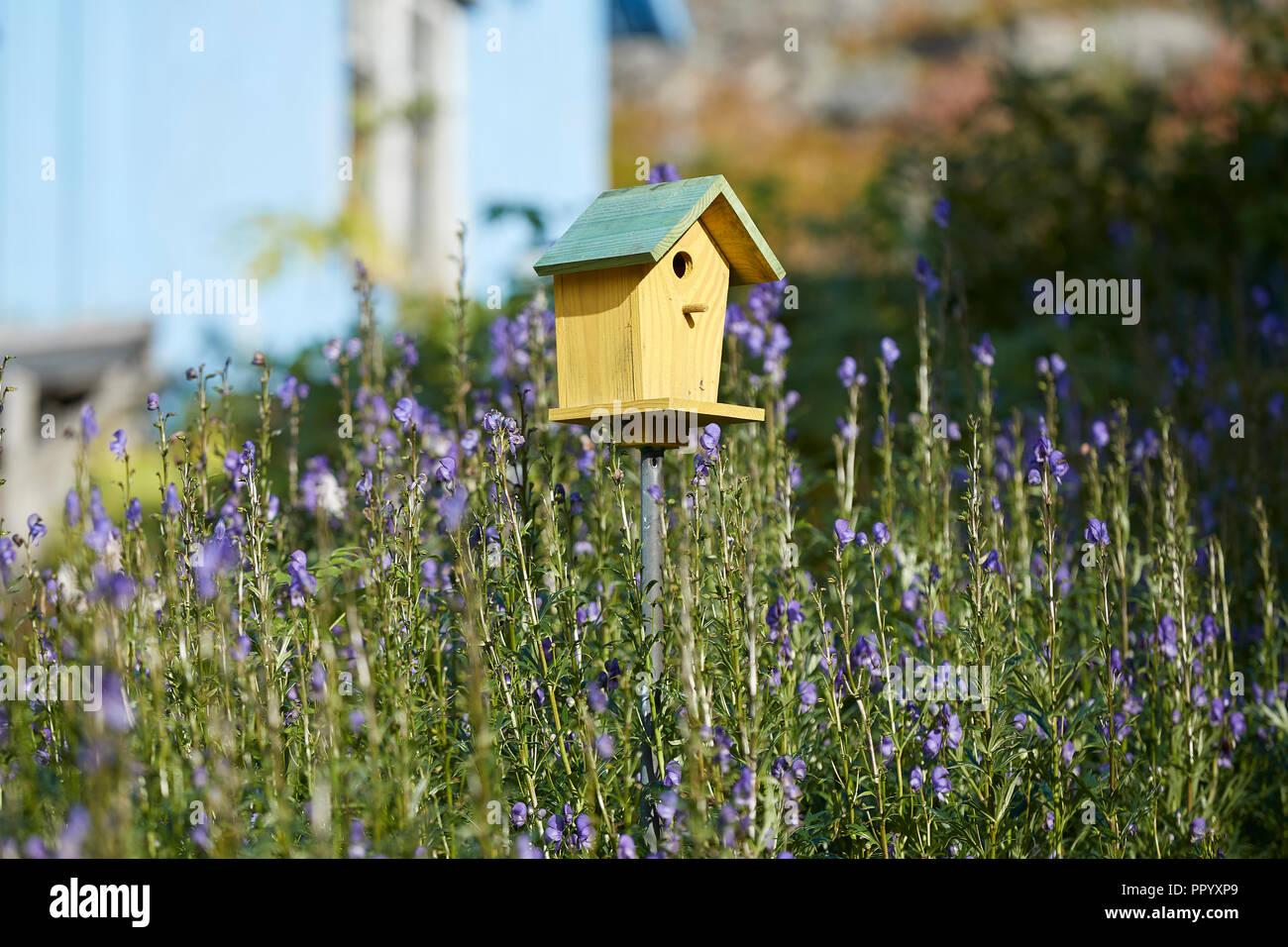 Wild Flower Birdhouse
