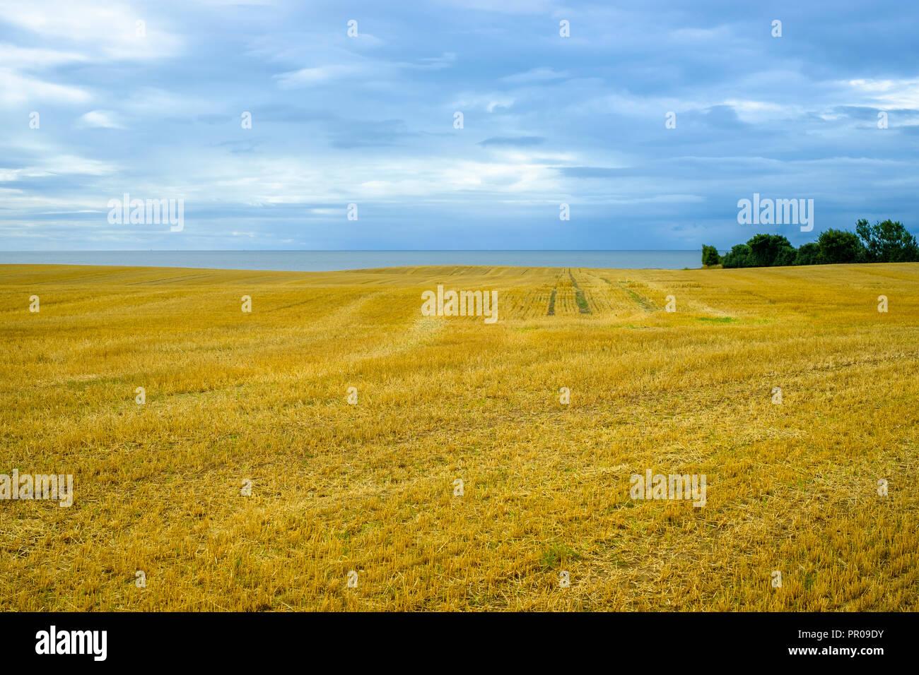 Rural area landscape and Baltic Sea in mystic light, Moen Island, Denmark, Scandinavia, Europe. Stock Photo