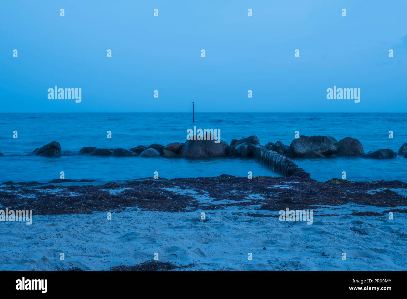 Rocks at the shore in blueish milky water after sunset during the blue hour at Rabylille Beach, Isle of Moen, Denmark, Scandinavia, Europe. - Stock Image