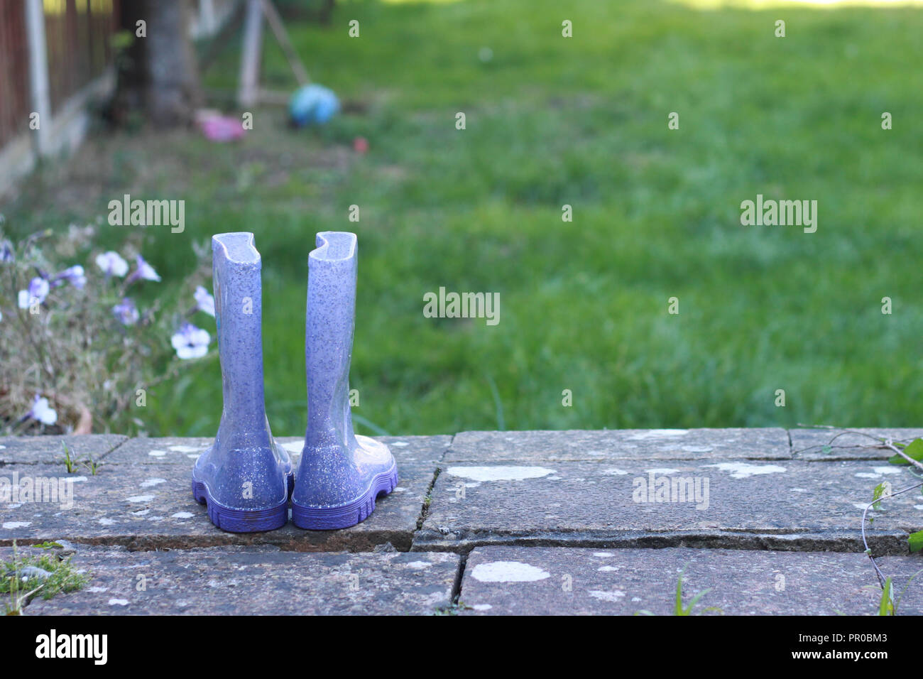 Child's purple welly boots on a step in a garden. Stock Photo