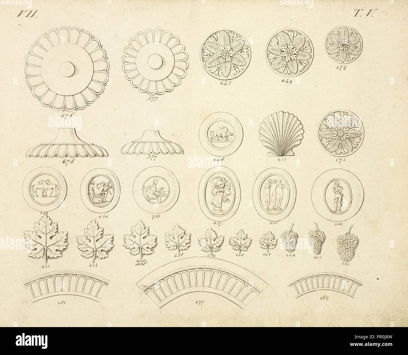 Shell and floral ornaments, Abbildungen von geprägten Ornamenten: Heft I-XII, Bruckmann, Peter, Engraving, between 1815 and 1820 - Stock Image