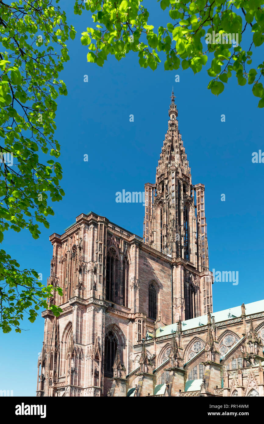 Strasbourg Cathedral Notre Dame Unesco World Heritage Site