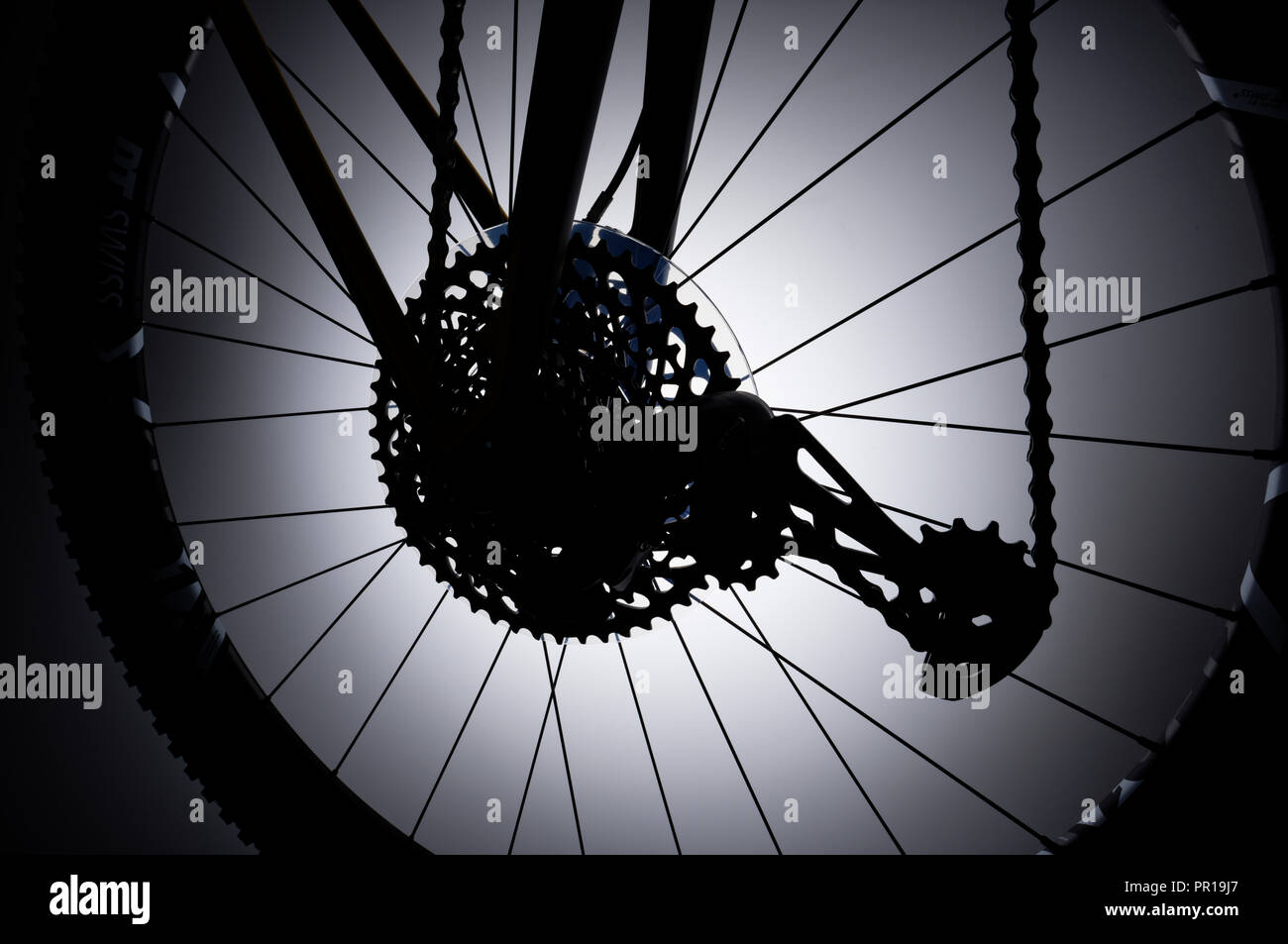 Rear wheel of a mountain bike with rear derailleur, chain and gear cogs. - Stock Image