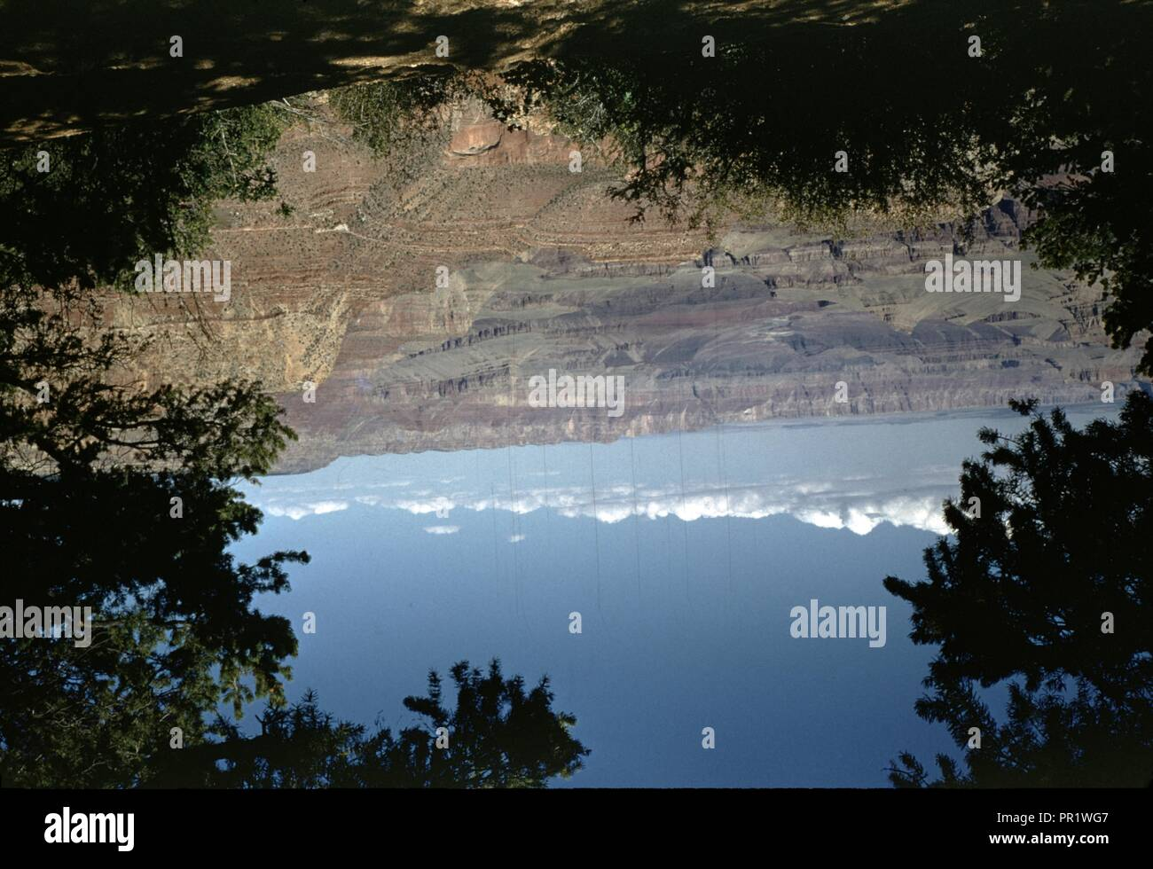 Natural Scenery, Photos Include Mountains, Blue Sky Visionary, Image With Tree And Mountain, Echo Image, 1955. () - Stock Image