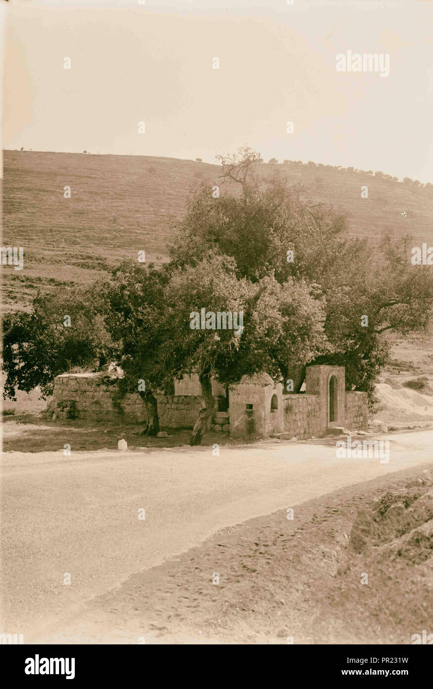 Wili [i.e., weli] at Bab el-Wad. 1934, Israel - Stock Image