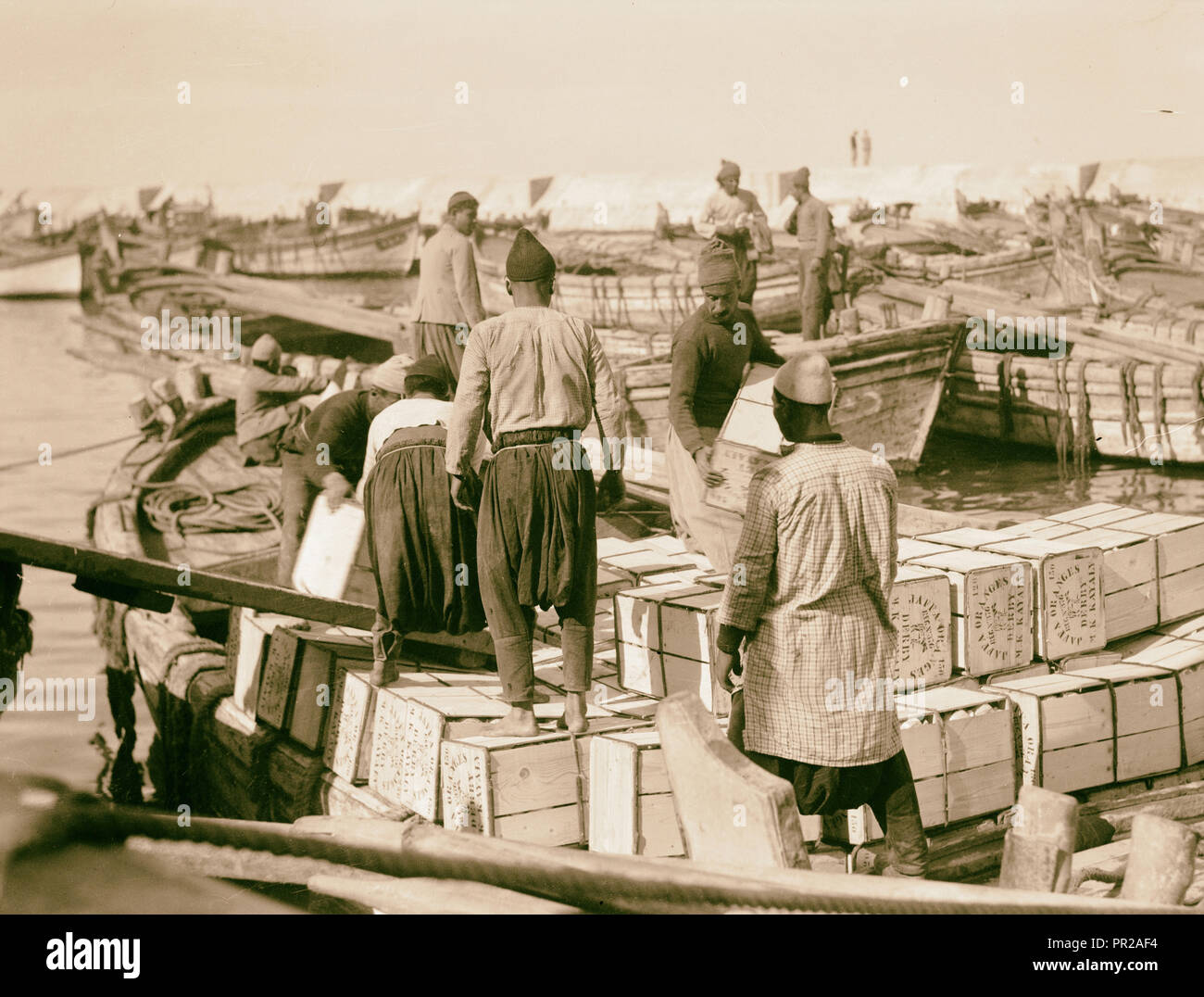 Lighters loaded with orange boxes for shipment. 1934, Israel - Stock Image