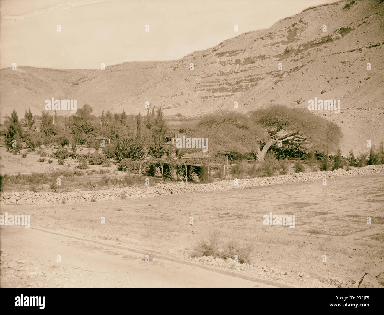 To Sinai by car Ain Gedeirat. Possibly Kadesh Barnea of Num. 328, 1920, Middle East, Israel and/or Palestine - Stock Image