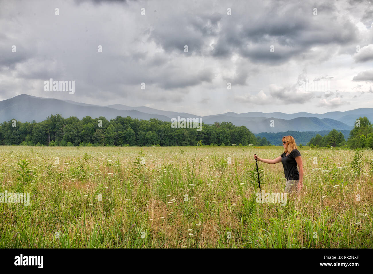 Caucasian woman walking in a green meadow in the Great Smoky Mountains on a cloudy day - Stock Image