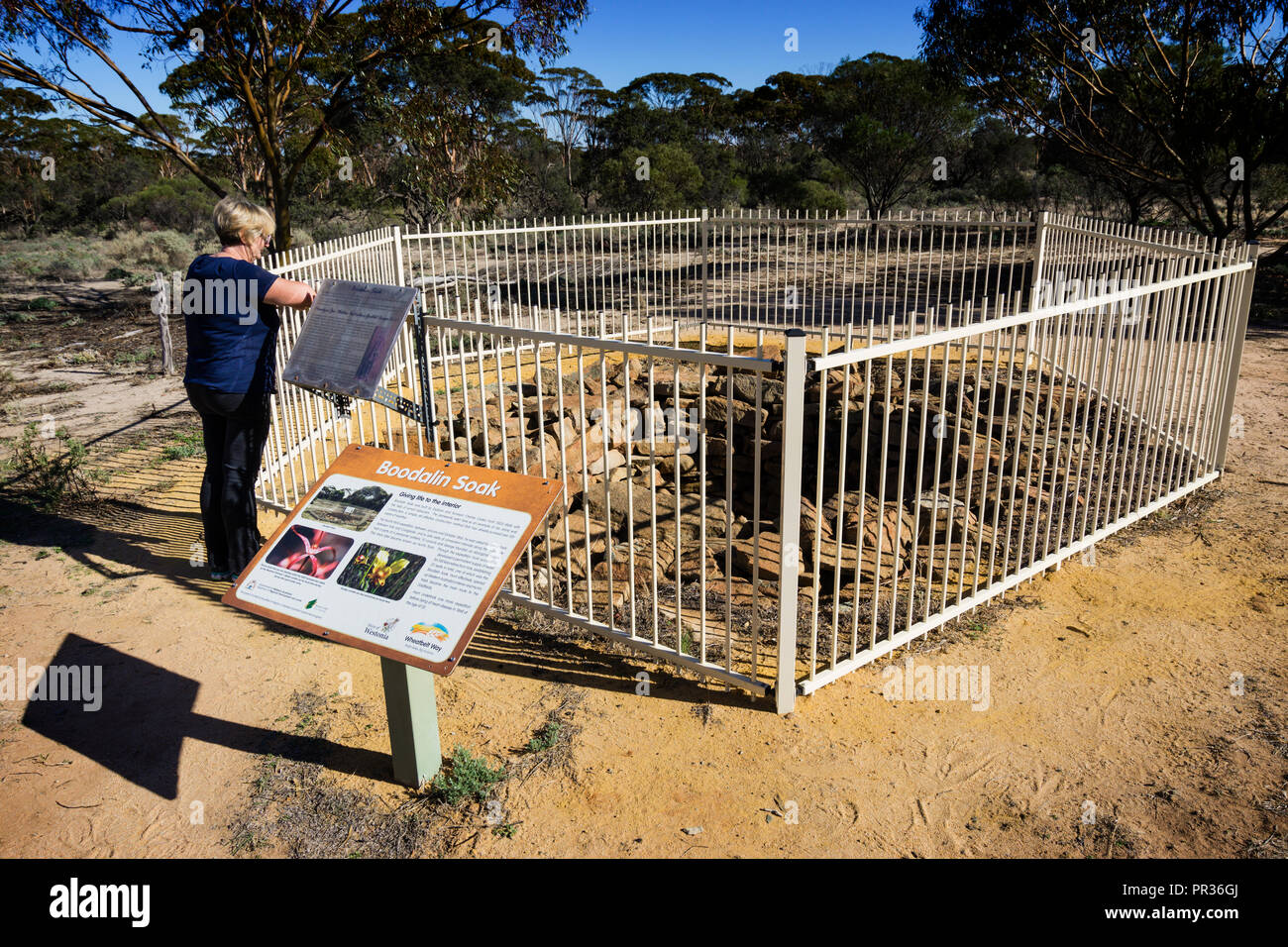 Women standing at fence looking at historic Boodalin Soak outside Westonia Western Australia - Stock Image