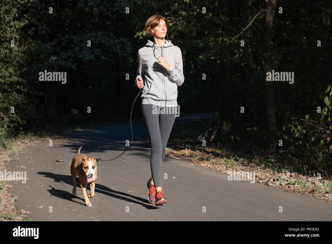Woman jogging with dog in a park. Young female person with pet doing running excercise in the forest - Stock Image