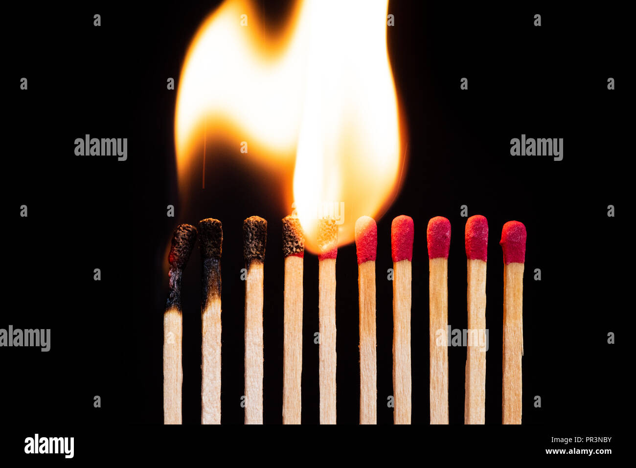 Lit match next to a row of unlit matches. The Passion of One Ignites New Ideas, Change in Others. - Stock Image