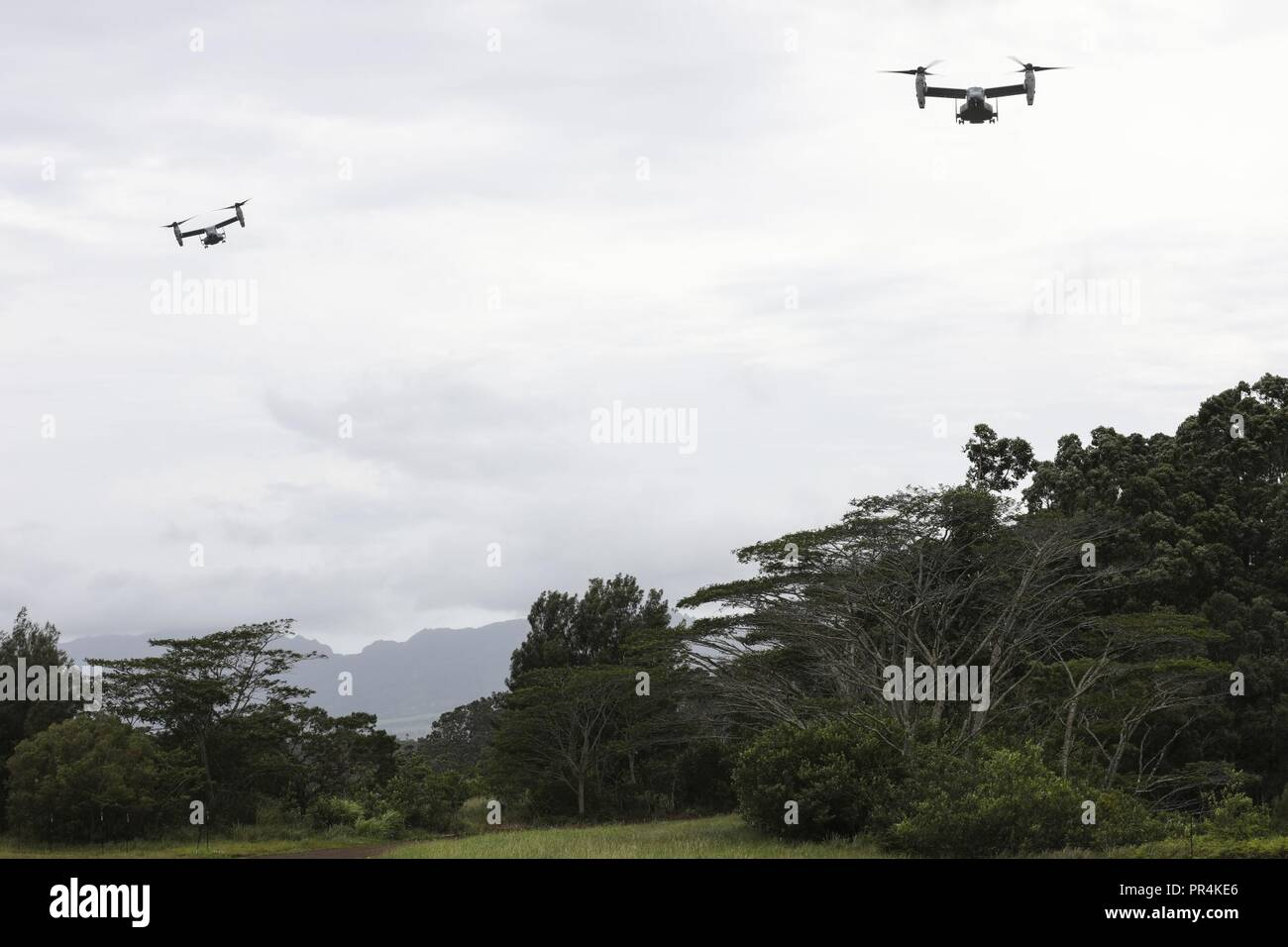 MV-22 Osprey aircraft assigned to Marine Medium Tiltrotor Squadron 363 (VMM-363), fly over jungle terrain during a confined area landing exercise near the Kahuku Training Area, Sept. 13, 2018. The training provided an opportunity for pilots and crew chiefs to improve their proficiency and experience in flying around a tropical environment. Stock Photo