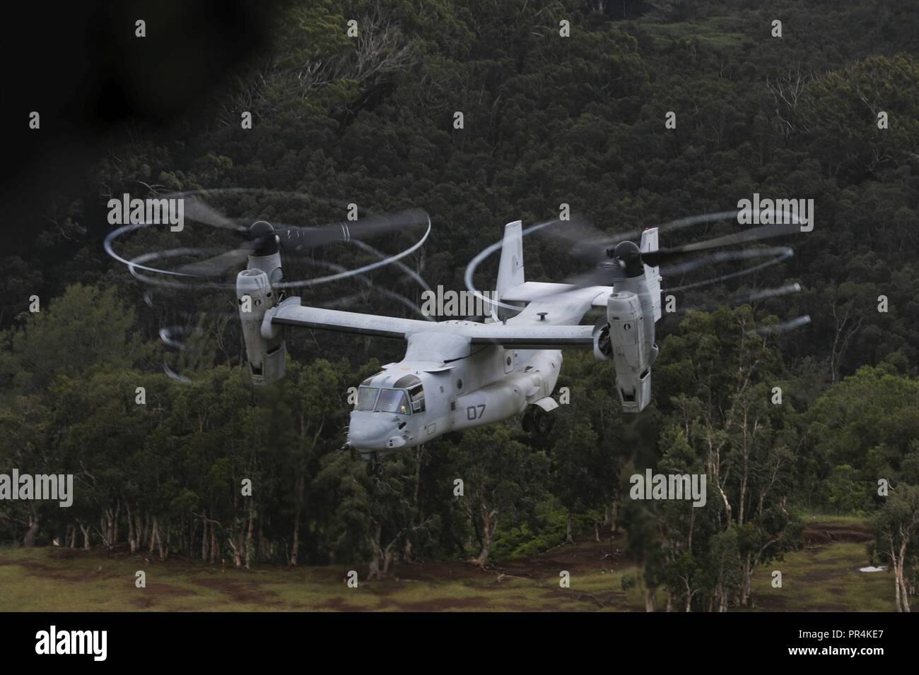 An MV-22 Osprey aircraft assigned to Marine Medium Tiltrotor Squadron 363 (VMM-363), takes off during a confined area landing exercise near the Kahuku Training Area, Sept. 13, 2018. The training provided an opportunity for pilots and crew chiefs to improve their proficiency and experience in flying around a tropical environment. Stock Photo