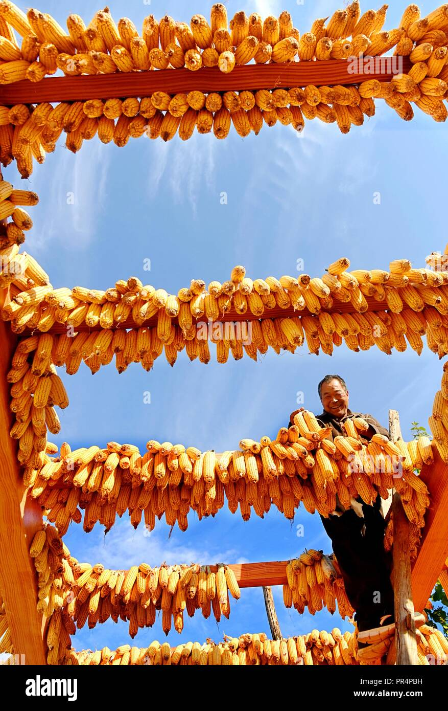 Yiyuan, China's Shandong Province. 27th Sep, 2018. A farmer airs newly-harvested corns in Longwangya Village of Zibo City, east China's Shandong Province, Sept. 27, 2018. Credit: Zhao Dongshan/Xinhua/Alamy Live News - Stock Image