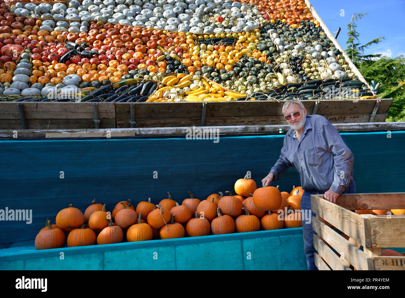 Slindon Village, West Sussex, UK. 29th September 2018. Robin Upton stands in front of his pumpkin display, opening next week, which this year commemorates the hundredth anniversary of the RAF, the centenary of the Armistice and his family's 50 years of growing pumpkins. It runs from October to November (peaking around Halloween) and comprises of around 100 different varieties of pumpkin and squash.Credit Gary Blake/Alamy Live News Stock Photo