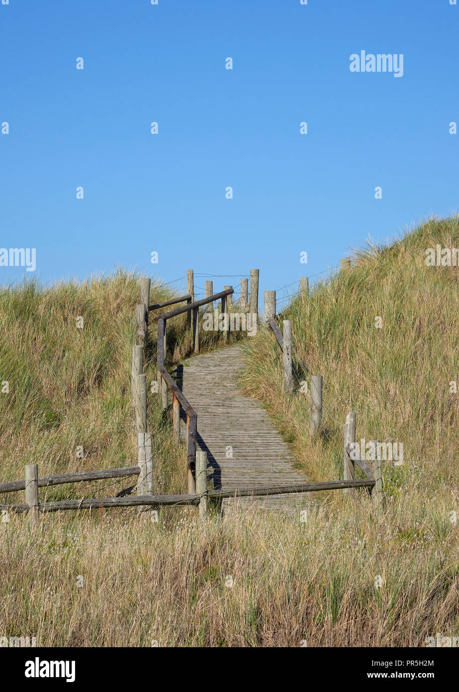 Littlehampton West beach sand dunes with boardwalk path Site of Special Scientific Interest West Sussex - Stock Image