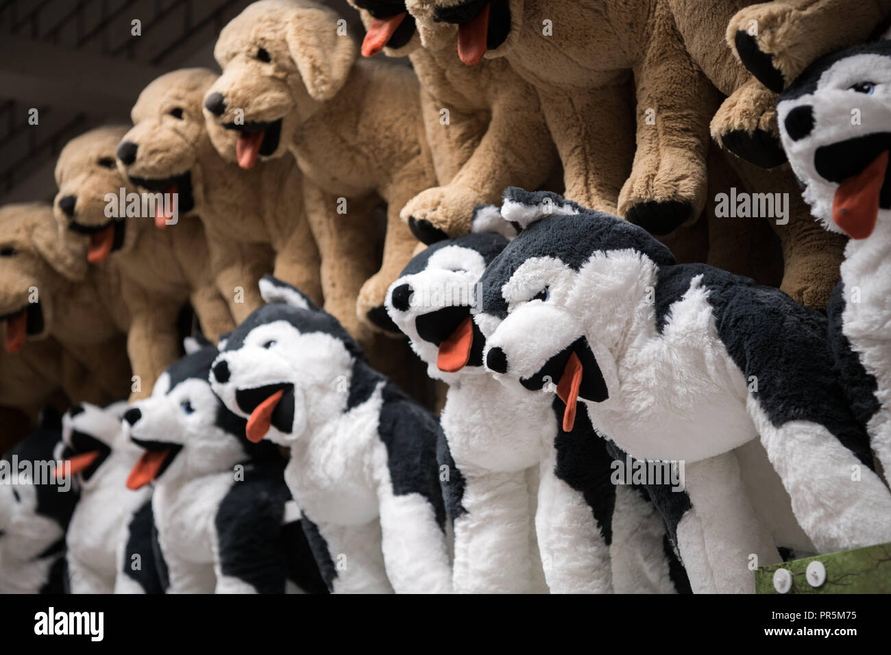Beanie Babies Stock Photos & Beanie Babies Stock Images - Alamy