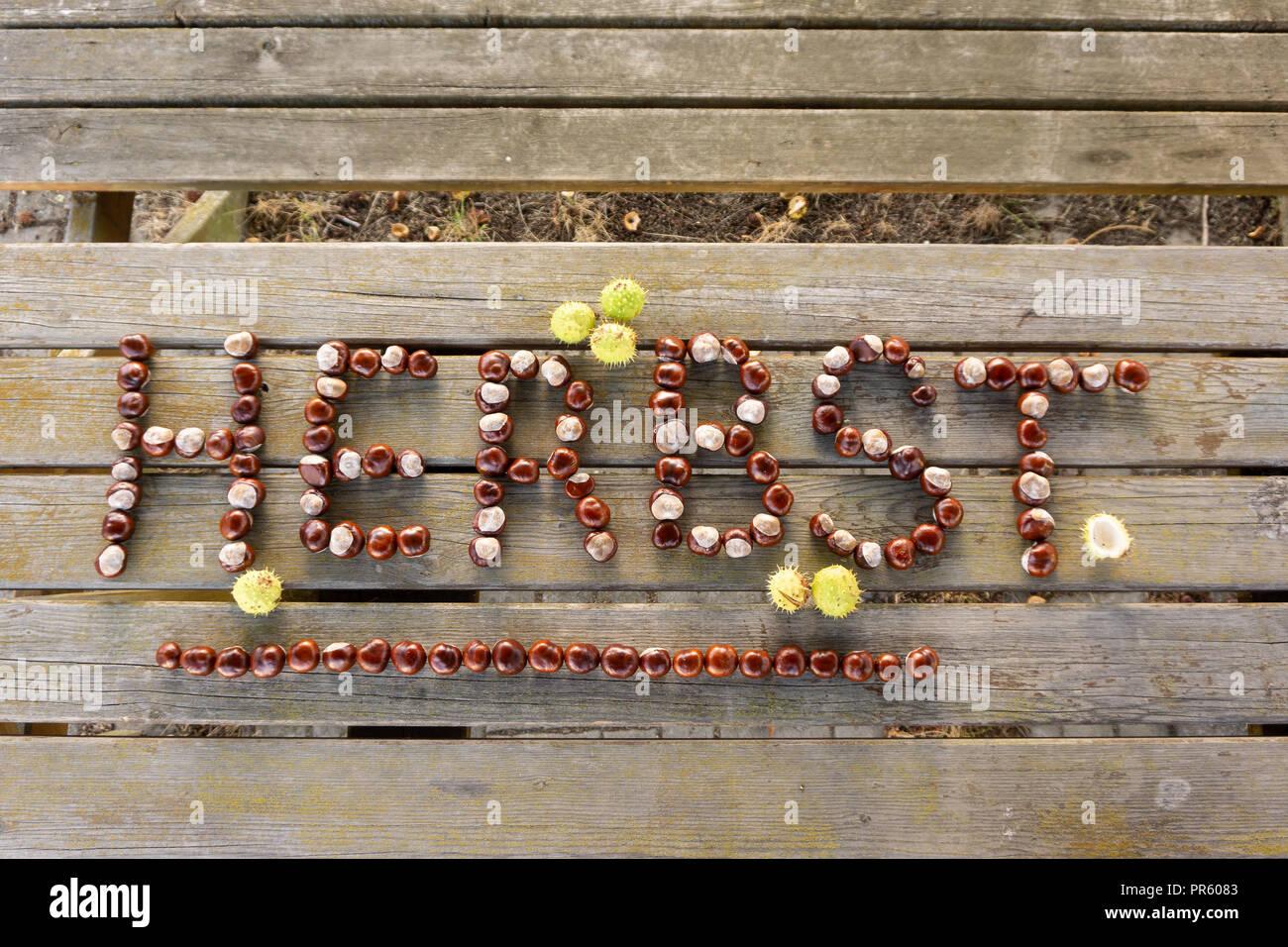 Herbst Schriftzug aus Kastanien auf Holztisch - Stock Image
