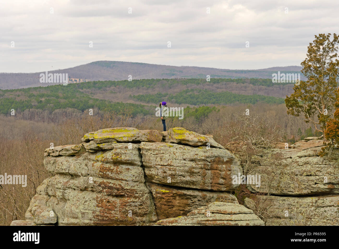 Searching across the canyon in Garden of the Gods in Shawnee National Forest in Illinois - Stock Image