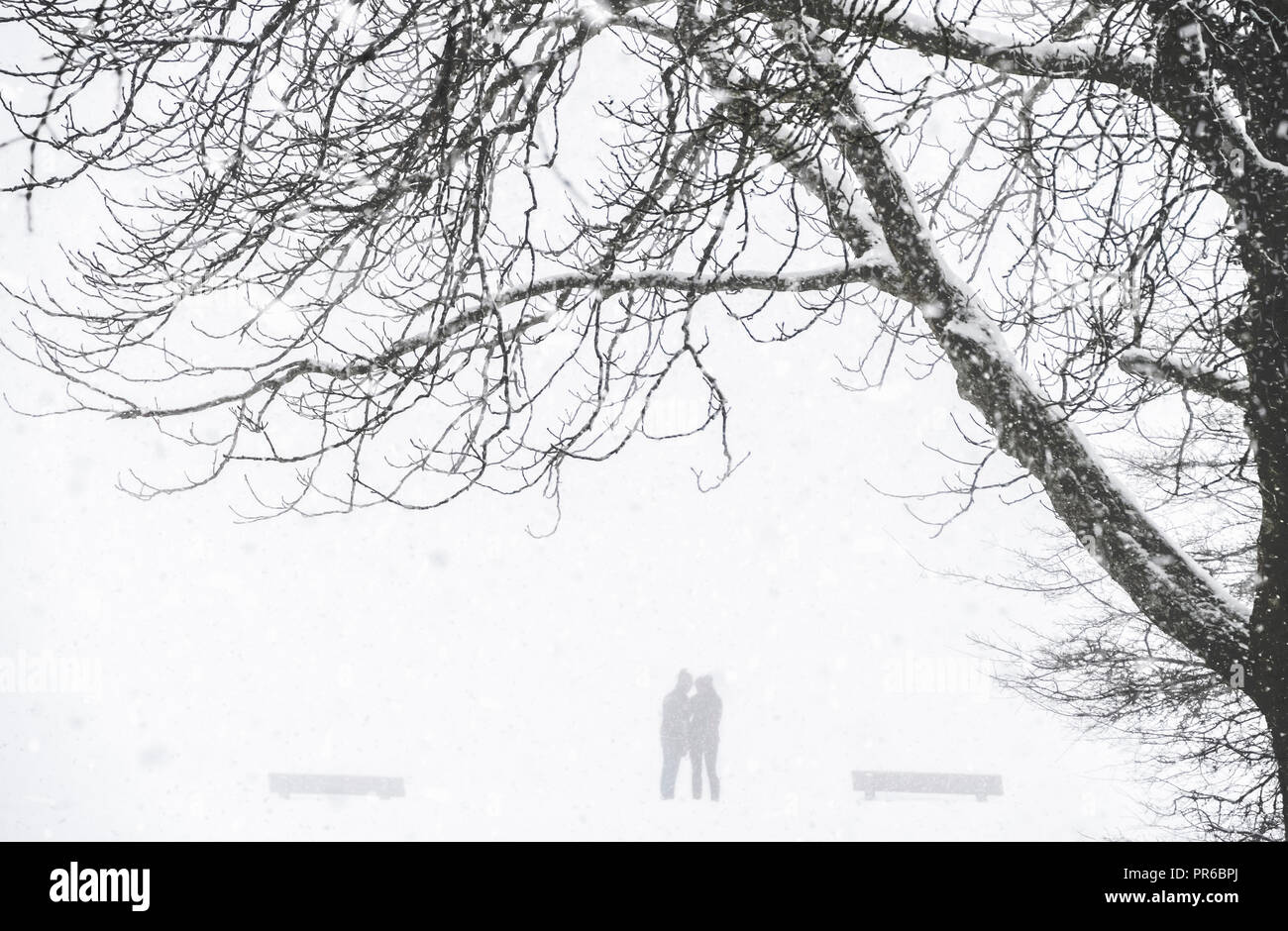 Harsh winter scenery with the silhouette of two people in a park ...