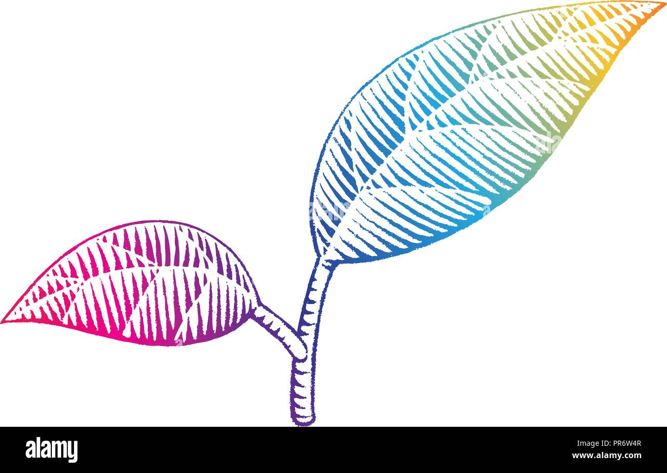 Illustration of Rainbow Colored Vectorized Ink Sketch of Leaves isolated on a White Background - Stock Vector