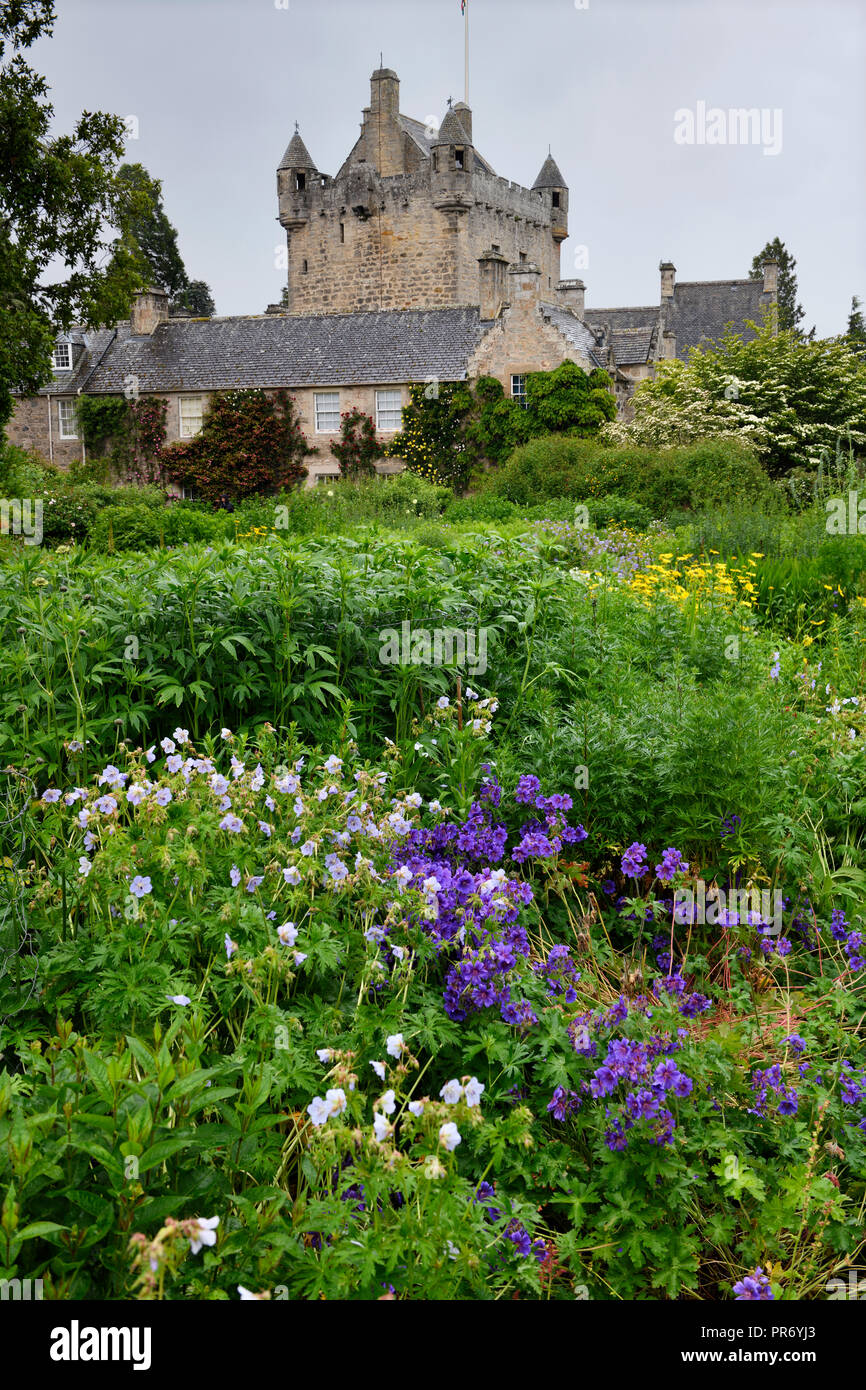 Wet Flower Garden with lush perennial flowers south of Cawdor Castle after rainfall in Cawdor Nairn Scotland UK - Stock Image