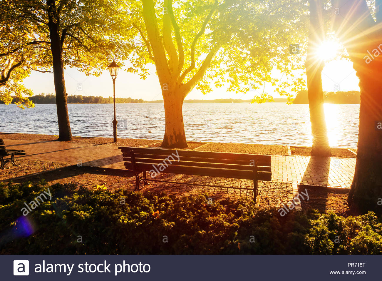 City Park Bench at Lakeshore Tegeler Lake in Berlin Germany