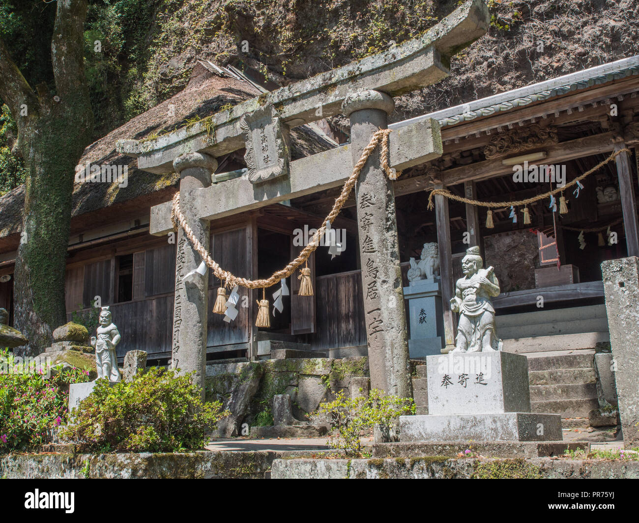 Nio temple guardians, and torii gate, at entrance to Tennenji  temple, Kunisaki Peninsula, Oita, Kyushu,  Japan - Stock Image
