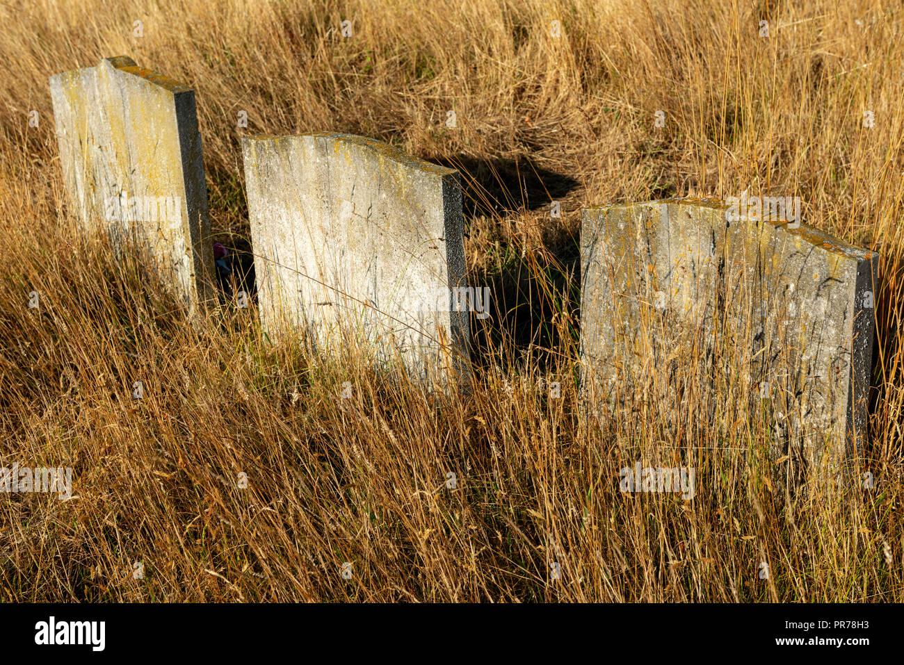 Overgrown graveyard Stock Photo