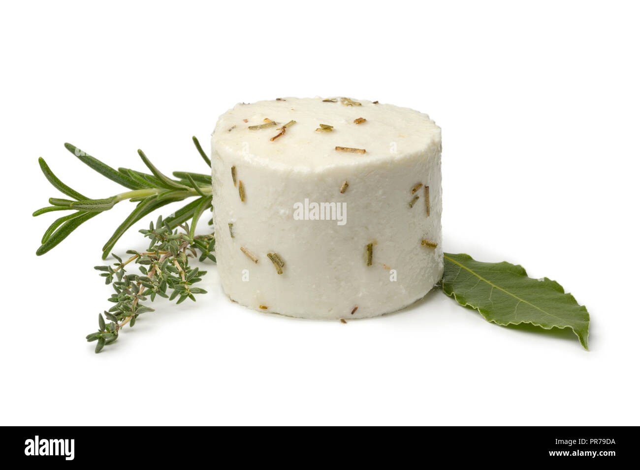 Single preserved white organic Dutch goat cheese and herbs isolated on white background - Stock Image