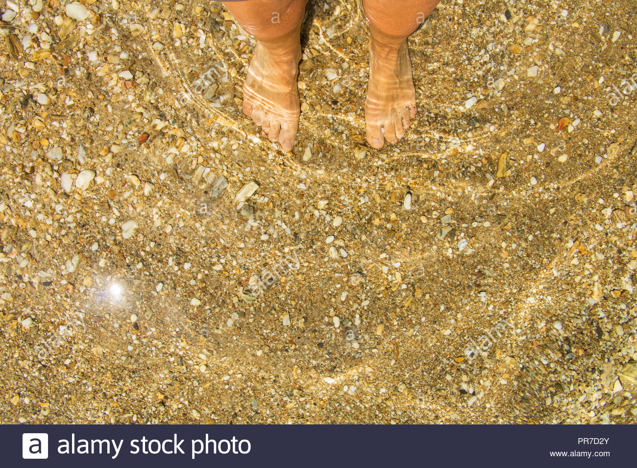 Woman's feet in Water, Feet in clear water at sandy beach on Porquerolles France, bare feet sea, barefeet, bare feet at sandy beach bare feet sea - Stock Image