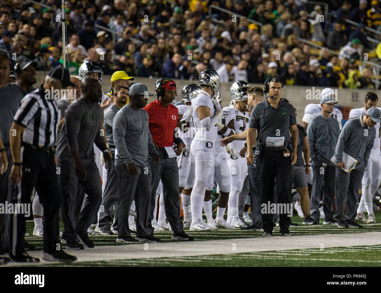 CA U.S.A. Oregon head coach Mario Cristobal on the sideline during the NCAA  Football game between Oregon Ducks and the California Golden Bears 42-24  win at ... 5ffe8f307