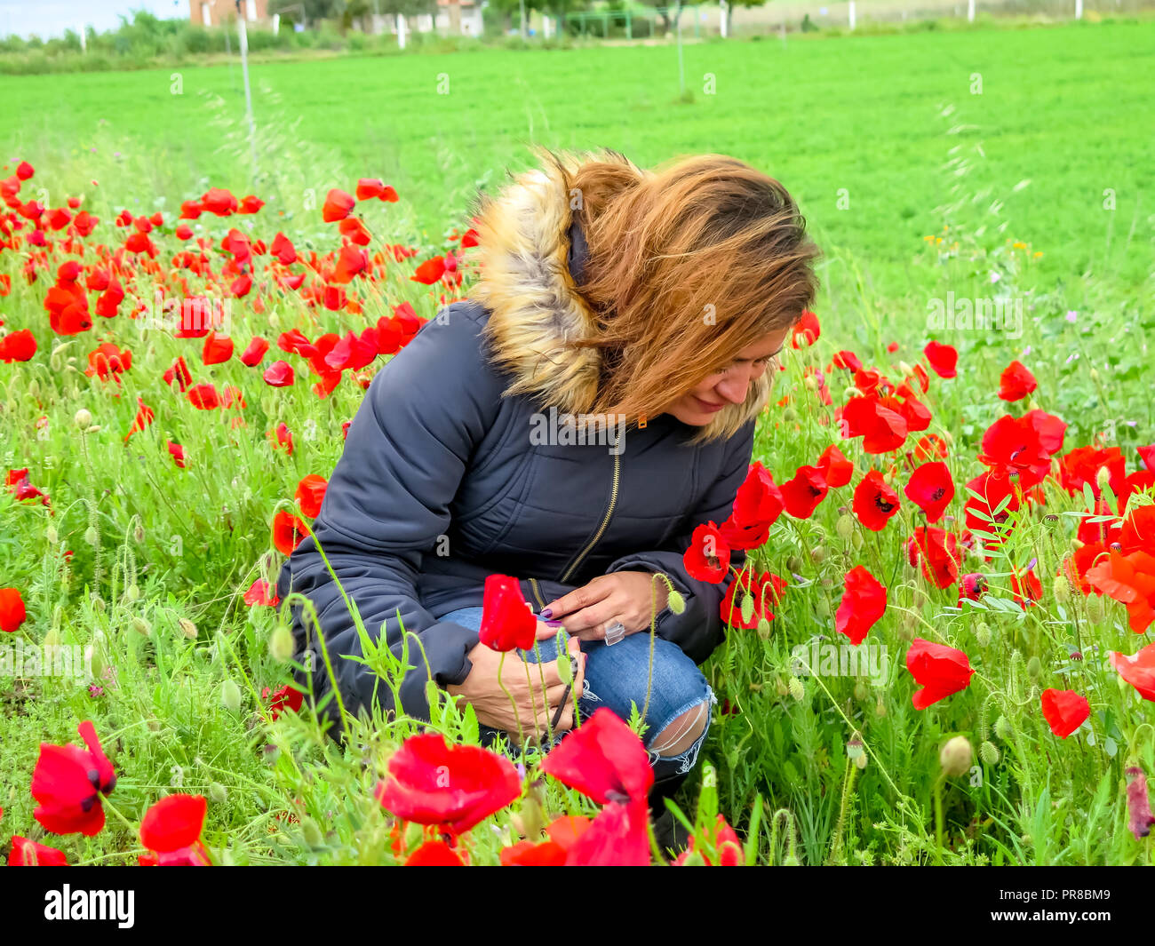 blonde hair woman wearing black coat in autumn smelling a red poppy flower in a field in Toldeo, Spain - Stock Image
