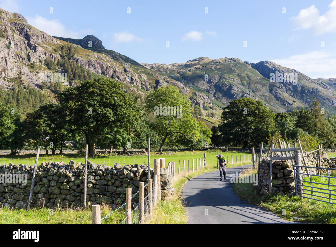 A hillwalker walking  in Great Langdale at the foot of Langdale Pikes in the Lake District, Cumbria, England. - Stock Image