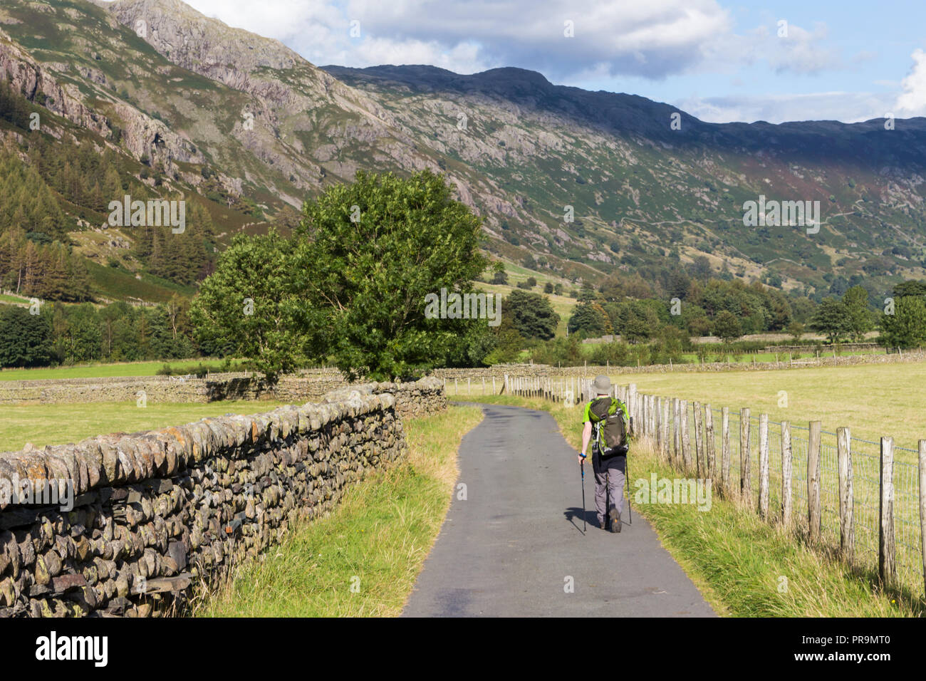 A hillwalker returning to Great Langdale valley at the foot of Langdale Pikes in the Lake District, Cumbria, England. - Stock Image