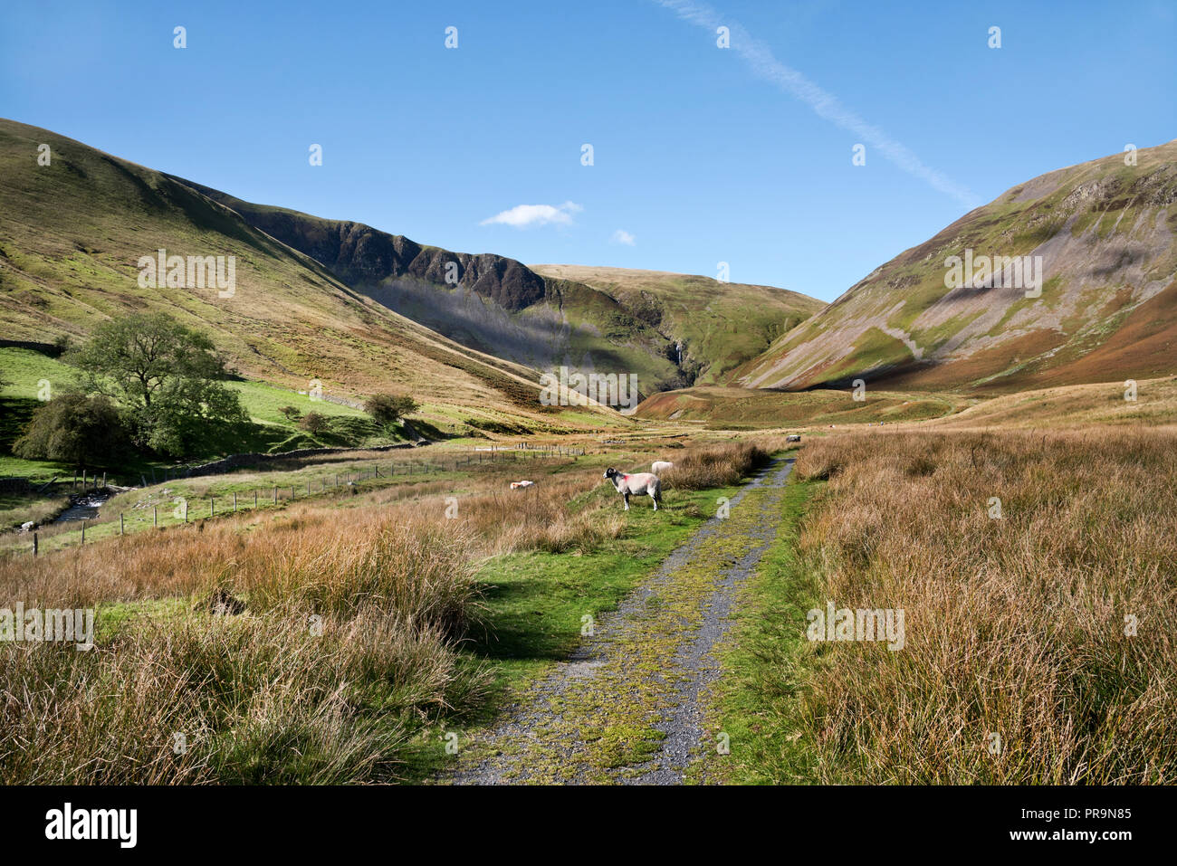 The Howgill Fells rear Sedbergh, Yorkshire Dales National Park, UK. Cautley Spout waterfall is seen in the distance (centre). - Stock Image