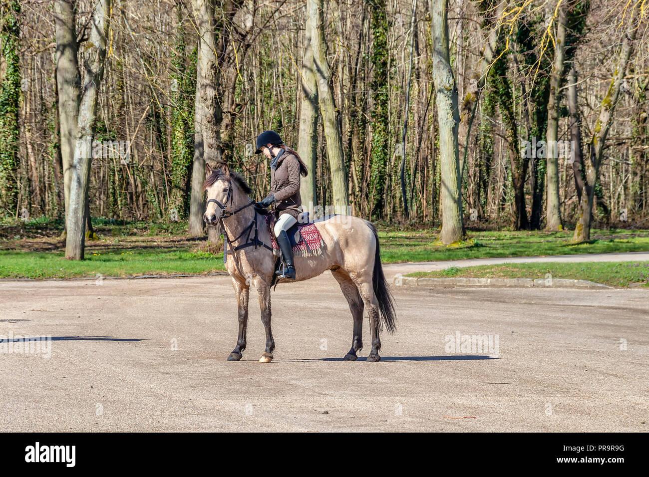 Riding ladies napoleon sam.leonardjoel.com.au