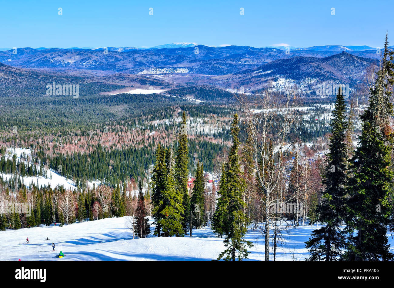 Sunny winter mountain landscape at ski resort Sheregesh, Russia. Slopes of mountains and valley covered with coniferous forest, bright sun, fluffy whi - Stock Image