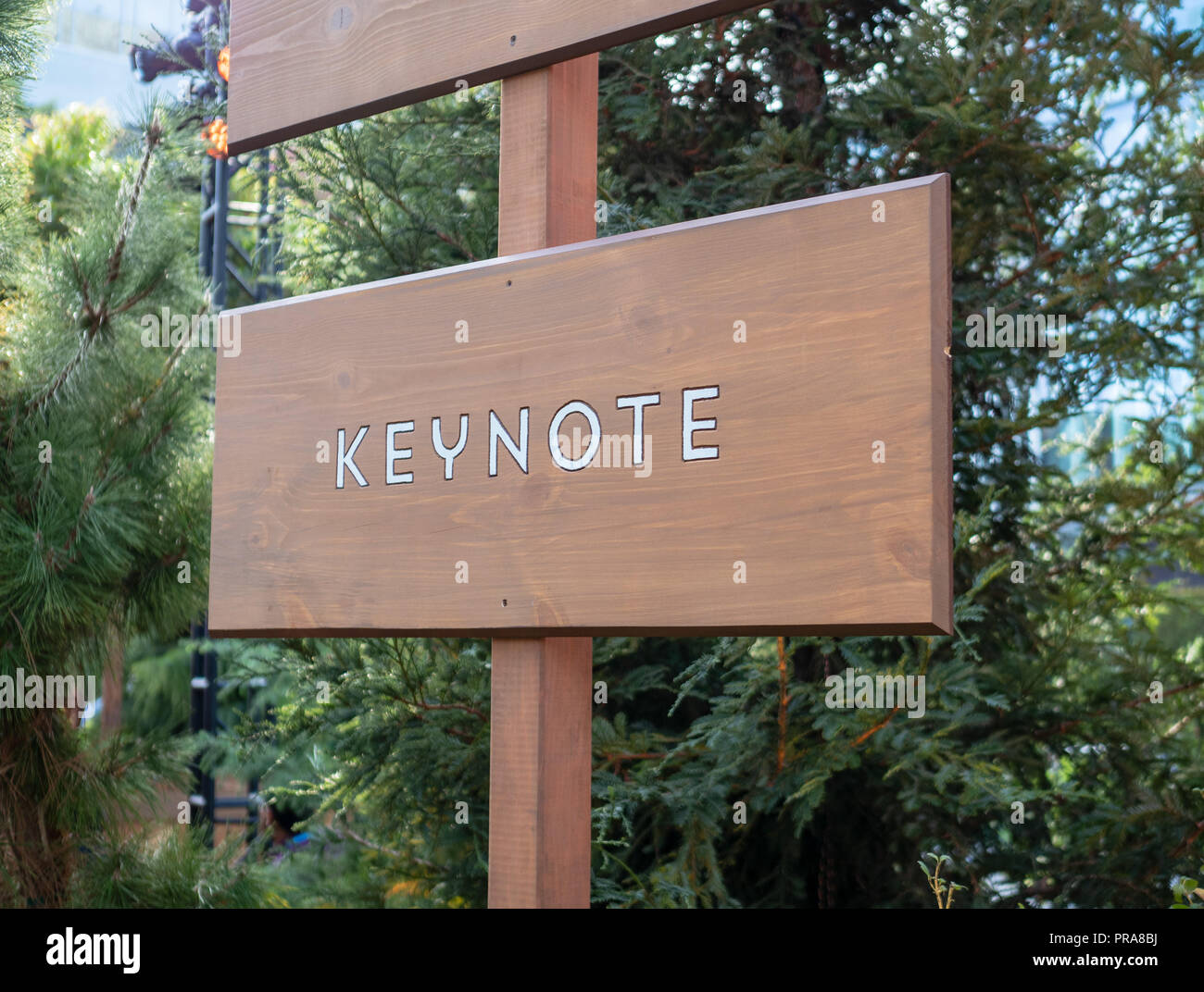 Keynote wooden sign post providing direction - Stock Image