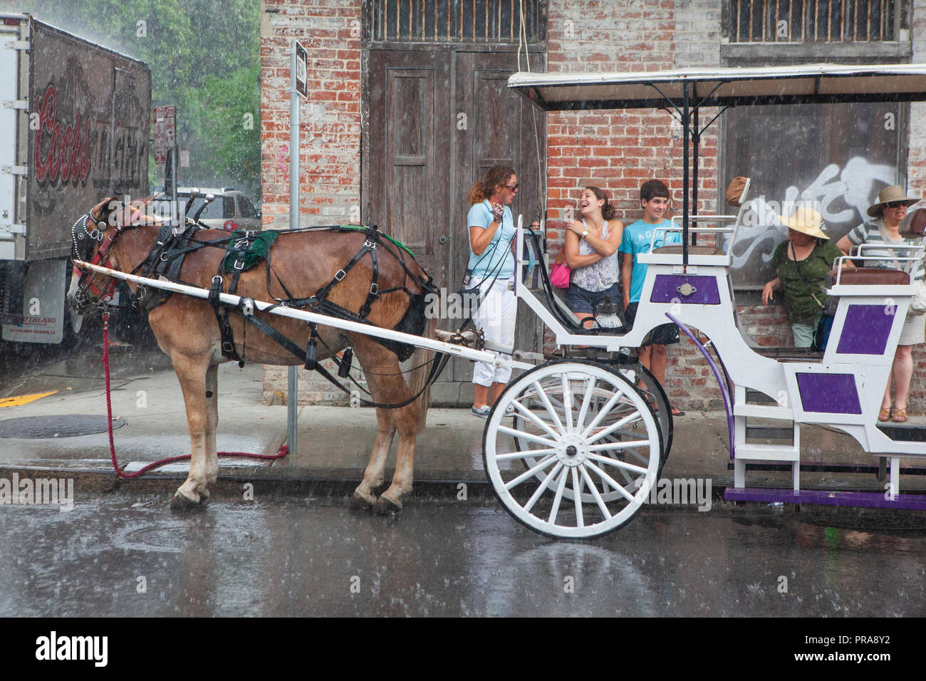 Horse and buggy tour rides along Bourbon Street, New Orleans, Louisiana, USA. - Stock Image