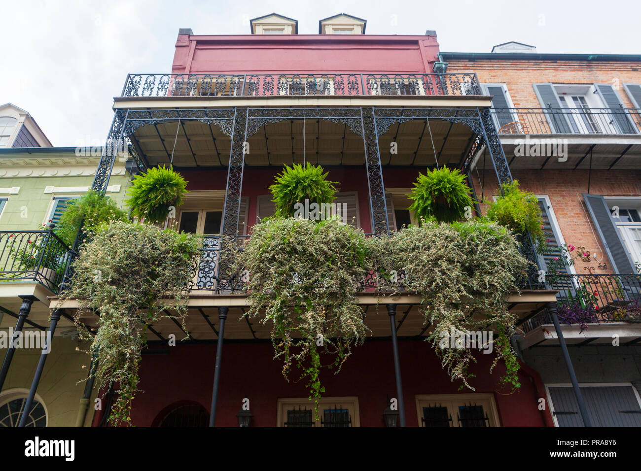 Container Gardens On A Balcony At A New Orleans Home Louisiana Usa