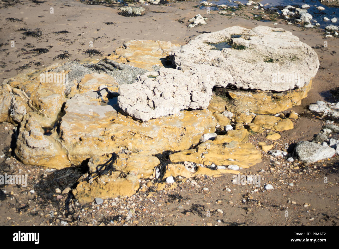 Cannonball rocks or concretionary Limestone over coarse-grained yellow sandstone, Roker beach, Sunderland, north east England, UK - Stock Image