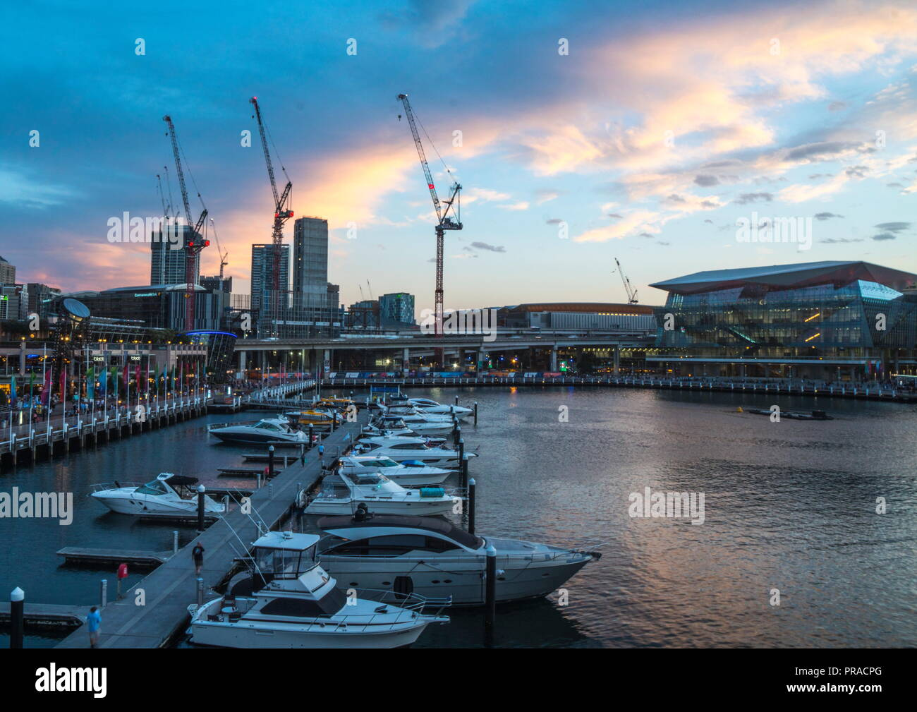 Darling Harbour in Sydney at sunset - Stock Image