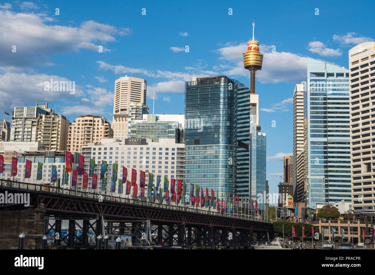 Darling Harbour in Sydney with the Sydney skyscrappers and Sydney Tower in the background. - Stock Image