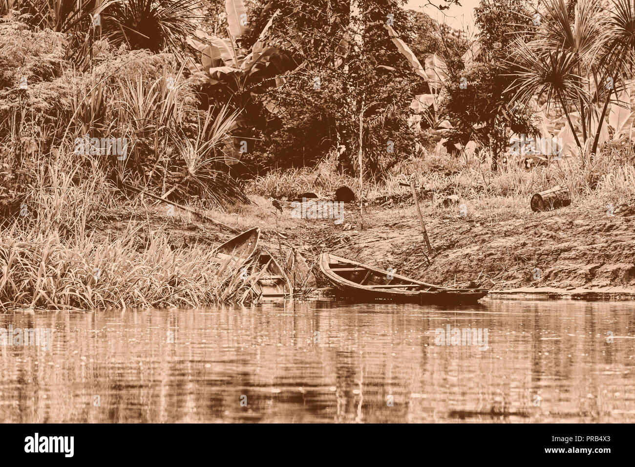 Traditional carved wooden canoe lying on the banks of the Amazon river in Peru - Stock Image
