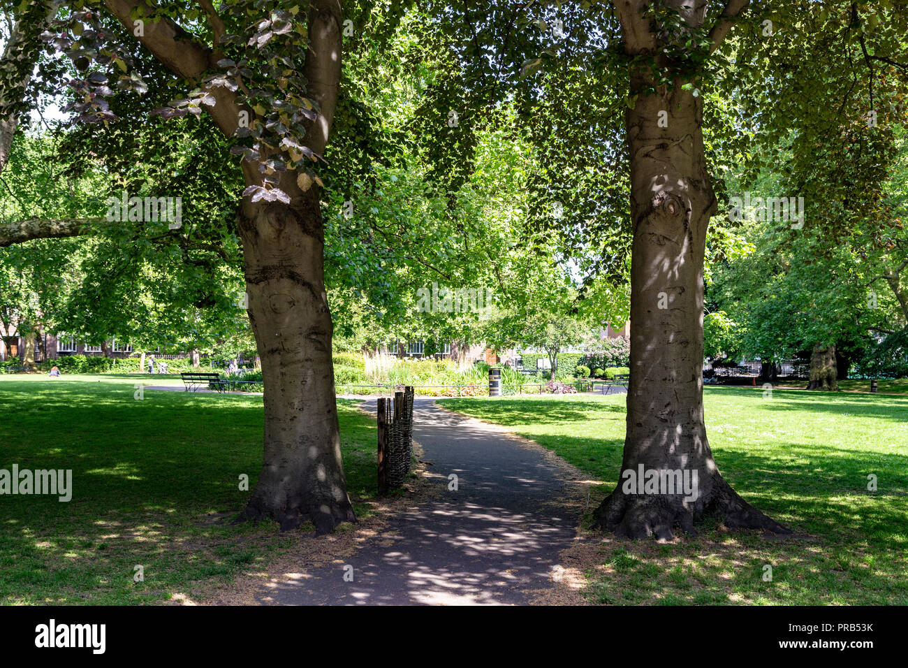 Brunswick Square gardens, a public park in Bloomsbury, central London, UK - Stock Image